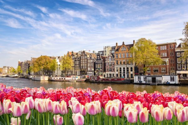 WideOrbit IBC 2020 Amsterdam